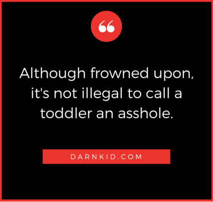 Although-frowned-upon-it-is-not-illegal-to-call-a-toddler-an-asshole.